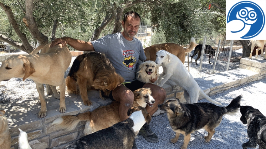 Takis Shelter: The Cretan hero of stray dogs shares his great story with Hellenic Daily News!